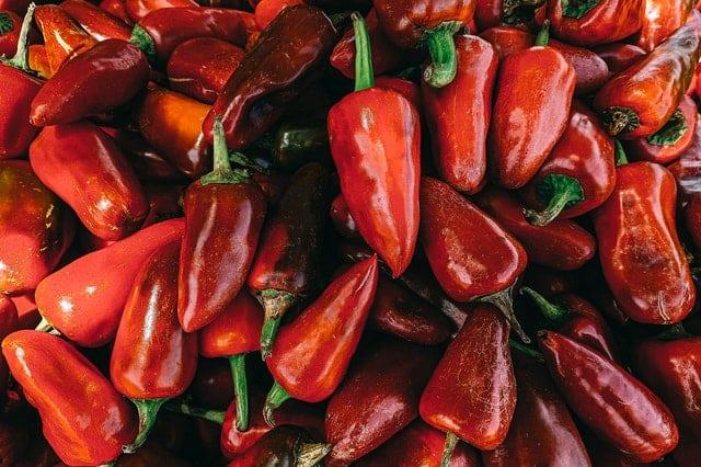 Comment planter du poivron ?